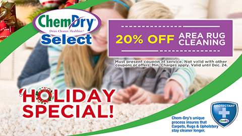 20% Off Holiday Special - Area Rug Cleaning