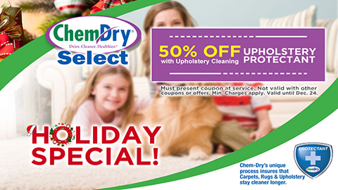 50% Off Holiday Special - Upholstery Cleaning