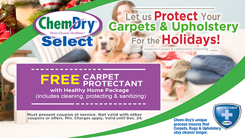 Holiday Special - FREE Carpet Protectant